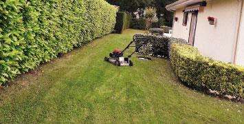 Tonte de pelouse chez un particulier ou un professionnel