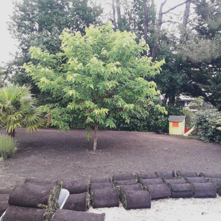 Pose de plaques de gazon dans un jardin proche de Bordeaux